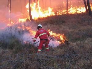 antincendio boschivo