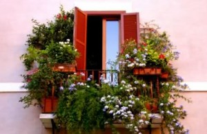 vasi fiori terrazzo