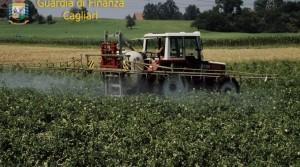 agricoltura sequestro