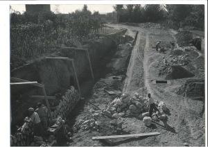 CASELLOTTO 1954 1 A3