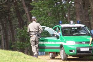 guardia forestale 1