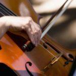 musica-violino-300x200