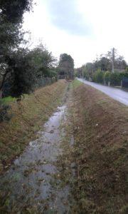 torrente-canalmagro-fescione
