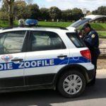 guardie_zoofile